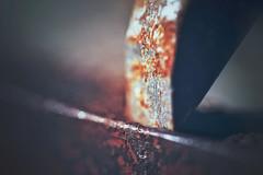 To Be Blunt (orbed) Tags: chisel handtool rust tool metal texture bokeh macro grain vintage sharp dof muted blunt metallic rough orange workshop sharpened tip edge macromonday