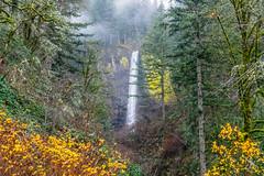 Latourell Falls (AjaRai) Tags: misty gorge latourelle waterfalls columbiarivergorge