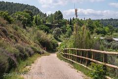 Via Verde de la Val del Zafán. Valdetormo, Teruel (Jose Antonio Abad) Tags: joséantonioabad teruel paisaje bicicleta aragón pública naturaleza valdetormo matarraña españa tren spain bicycle bike ferrocarril nature train vélo valdeltormo es