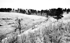 A Minimalistic Landscape Around Wind Cave National Park and Cold Spring Creek (Black & White)