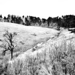 A Minimalistic Landscape Around Wind Cave National Park and Cold Spring Creek (Black & White) thumbnail