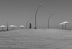Yet the bird is still higher (Ivona & Eli) Tags: sunshades posts lamp tlv urban deck biker bike streetphotography street blackandwhite monochrome