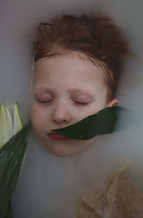 Vivify {6} (dewframe) Tags: girl flower littlegirl emotive beauty naturalportrait sweet melody light milk water