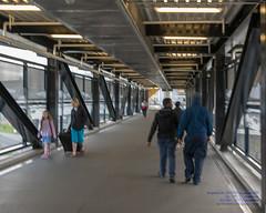 Crossing the Steel Bridge to the Light Rail (AvgeekJoe) Tags: d5300 dslr internationalairport ksea nikon nikond5300 seatac seatacinternational seatacinternationalairport seattle seattletacomainternational seattletacomainternationalairport sigma1835mmf18 sigma1835mmf18dchsmart sigma1835mmf18dchsmartfornikon sigmaartlens washington washingtonstate airport