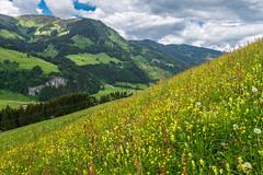 Steinkar- und Weissenhofalm (rbrands) Tags: wanderung gemeindekleinarl salzburg österreich de