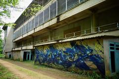 RUBER (Ghetto En Kouleurs) Tags: ghetto en kouleurs crew ruber freestyle instinct fast graff graffiti tag urbex oklm asile asylum art street organic blue yellow