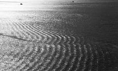 30 may 2018 - photo a day /extra (slava eremin) Tags: photoaday dailyphoto 365 1day auckland nz newzealand ocean waves boats bw monochrome blackandwhite blanconegro bianconero
