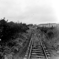 Culchies on track for... (National Library of Ireland on The Commons) Tags: jamespo'dea o'deaphotographiccollection nationallibraryofireland junction railway kiltimagh culchies comayo points sleepers rails 1974 burma line mayo countymayo kiltimaghrailwaystation closing endoftheline