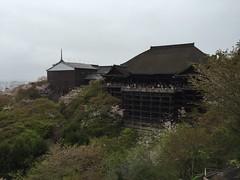 IMG_artphoto_kyoto1 (keisukeparis) Tags: art nyc ny monaco montecarlo kyoto japan london happy yachtlife artoftheday