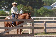 JBC_5790.jpg (Jim Babbage) Tags: krahc bethany appaloosa horses horseshow 2018