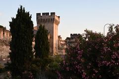 Avignon, Westliche Stadtmauer zur Rhone (liakada-web) Tags: avignon provencealpescôtedazur frankreich fra