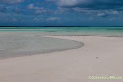 Playa Flamenco Beach, Cayo Coco, Cuba (Sebastiao P Nunes) Tags: flamencobeach praia playa sandbanks canoneos70d nunes snunes spnunes spereiranunes cuba cayococo oceano caribe caribbean