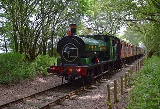 GWR Sadlle Tank No. 813, of 1900 vintage, takes the first passenger train of  the day from North Weald to Epping Forest. Epping Ongar Railway Summer Steam Gala. 08 06 2018