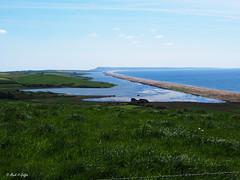 Chesil Beach (mark.griffin52) Tags: lagoon olympusem5 england dorset abbotsburysubtropicalgardens chesilbeach blue water sea gravel beach seascape landscape