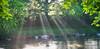 Sunbeams on the Don (alisonsage1) Tags: sunshine sunbeams sunlight