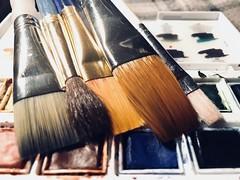 HMM - Hand tools (f l a m i n g o) Tags: macro paintbrushes brushes brush tool handtool macromonday 31931
