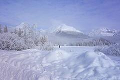 alone (majka44) Tags: winter slovakia people landscape snow tree mountain forest building hotel sky clous blue white