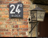 20170630_42 House number 24a | Auschwitz concentration camp, Poland (ratexla) Tags: ratexlasinterrailtrip2017 interrail auschwitz 30jun2017 2017 canonpowershotsx50hs interrailing eurail eurailing tågluff tågluffa tågluffning travel travelling traveling journey epic europe earth tellus photophotospicturepicturesimageimagesfotofotonbildbilder wanderlust vacation holiday semester trip backpacking tågresatågresor resaresor europaeuropean sommar summer ontheroad oświęcim poland polska auschwitzconcentrationcamp concentrationcamp ww2 secondworldwar war nazism racism bigotry history violence museum theholocaust förintelsen koncentrationsläger sign signs skylt skyltar lantern light lamp lykta block 24 24a auschwitzi brick bricks tegel favorite