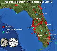 FishKillMapAUG2017 (FWC Research) Tags: fishkill diseasedfish lesionedfish fishkillmap fish kill hotline