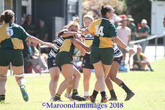 2018 Rd 9 Brothers v Wests_Women (346) (Maroondamimages@gmail.com) Tags: