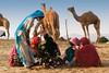 Conversations Pushkar Mela. Rajasthan (Tito Dalmau) Tags: women conversations camels fair mela pushkar rajasthan india