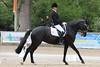 _MG_7922 (dreiwn) Tags: dressage dressur dressuur pferd reitturnier turnierreiten pferdesport horse horseback horseriding equestrian reitverein dressurprüfung kandare doublebridle reiten pferde reitplatz ridingarena