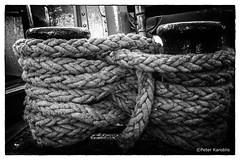 Hamburg Hafen / harbour (peterkaroblis) Tags: hamburg hafen harbour schiff ship anlegesteg jetty leine rope schwarzweiss blackwhite lines curves linesandcurves
