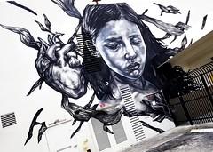 Wynwood 2018 (7) (Pavlov'sDog) Tags: wynwoodwalls wynwood miami streetart stree street grafitti pintura muralista mural colorful colorido calle callejero artecallejero