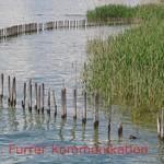 Lake Constance thumbnail