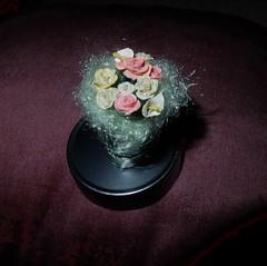 Miniature Roses (Shabnam_J) Tags: flowers flower rosses clayart miniature flowerart handmade airdryclay