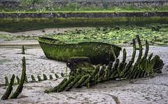 Niembrp Asturias (torresgarciac) Tags: asturias paraiso llano cura barca mar escalera principado playa bosque