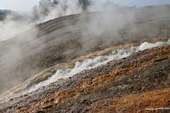 El camino del Agua Hierviendo 2 (pniselba) Tags: yellowstone yellowstonenationalpark parquenacional parquenacionalyellowstone nationalpark geyser geysir geiser géiser crater volcan volcanic volcanico volcano usa eeuu wyoming