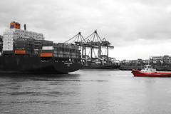 Altenwerder S1#2 (JoNiGa_87) Tags: wasser water fluss schiff ship containerschiff hamburg elbe hafen habour altenwerder hapaglloyd valparaisoexpress alexandersuter joniga urban