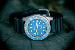 Squale, 50atmos. 7 (EOS) (Mega-Magpie) Tags: canon eos 60d outdoors squale 1521 50atmos watch wristwatch time timepiece swiss made dive diver professional shark blue orange tree stump