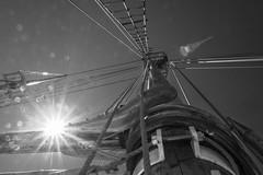 Sailing in the Oslo Fjord (Of Light & Lenses) Tags: bigdøy oslo norway oslofjord sailing boat woodenboat museum museumisland northsea olympus norwegen nordicculture mzuiko281240mmpro
