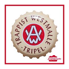 Westmalle (J.Gargallo) Tags: westmalle beer bier birra cerveza cerveja tripel drink macro macrofotografía marco framed canon canon450d eos eos450d tokina tokina100mmf28atxprod