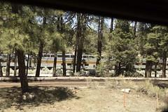 SedonaVacation_May2018-1786 (RobBixbyPhotography) Tags: arizona grandcanyon sedona vacation railroad tour train travle