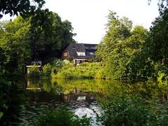 Ideal home (marionvankempen) Tags: heinis atmosphere cottage eveninglight dutch holland throughherlens denbosch