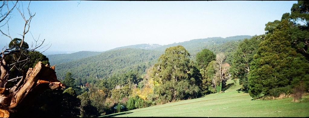 Dandenong Ranges National Park by Matthew Paul Argall, on Flickr