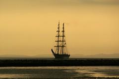 Fryderyk Chopin calling Aarhus (Jaedde & Sis) Tags: fryderykchopin brigrigged sailingship tall ship dawn misty naturalsepia aarhus friendlychallenges sweep