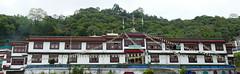 Ranka / Lingdum Monastery (Ankur P) Tags: india sikkim eastsikkim gangtok mountains himalayas ranka lingdum monastery himalaya tibetan buddhism