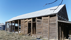 An old farm shed in western NSW. Interesting construction!! (darrylkirby) Tags: australiana australia buildings bush architecture oldsheds outbacknewsouthwales ruralaustralia rural shed sheds
