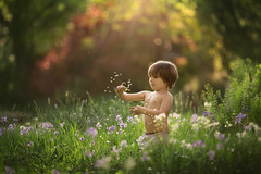 Summer (Windermere Images) Tags: childhood dandelions summer wales garden boy fun children love magic uk childrens photography