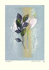 Unknown flower (Japanese Flower and Bird Art) Tags: flower lily lilium liliaceae yo takahashi modern woodblock print japan japanese art readercollection