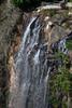 Australia_2018-133.jpg (emmachachere) Tags: subtropical trees hike waterfall boatride springbrook australia rainforest kanagroo animals koala brisbane boat lonepinekoalasanctuary