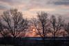 Sunrise in Balabanovo (3823) Рассвет в Балабанове (thepaparazzo) Tags: балабаново жд город mushkarin victormushkarin мушкарин рассвет городбалабаново sunrise thepaparazzo sunup рассветвгороде море фотографбалабаново фотографвиктормушкарин деревья солнце sun поездка