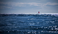The red sail ((Virginie Le Carré)) Tags: océan ocean bleu blue red rouge extérieur outside paysage landscape marine sail voile reflets