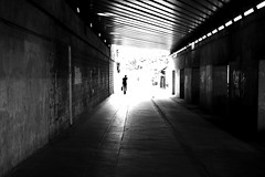 Leaving the dark side (pascalcolin1) Tags: paris12 homme man lumiere light ombre shadows tunnel chanel photoderue streetview urbanarte noiretblanc blackandwhite photopascalcolin 5omm canon50mm canon