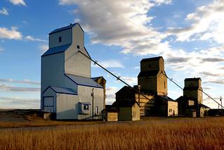 Grain elevators.Mossleigh Alberta.