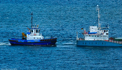 Scotland Greenock tug Strathfoyle and a cargo ship called Mia-Sophie-B 2 May 2018 by Anne MacKay (Anne MacKay images of interest & wonder) Tags: scotland greenock sea tug strathfoyle cargo ship miasophieb xs1 2 may 2018 picture by anne mackay
